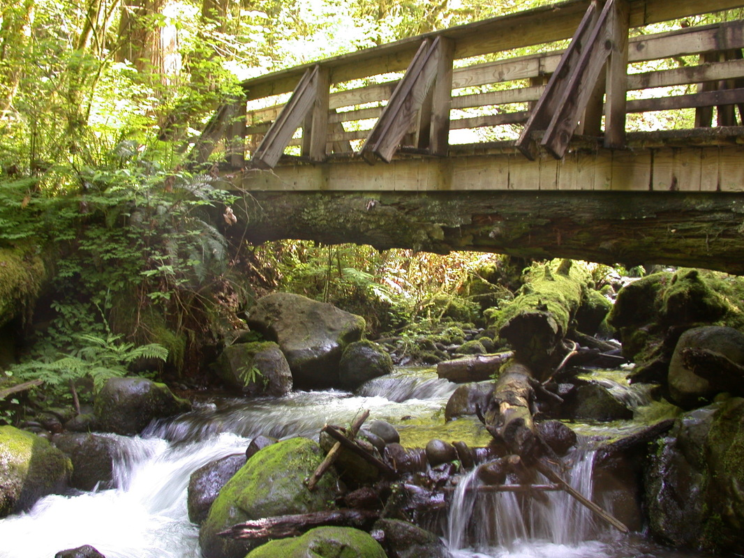 bridge over Walker Creek