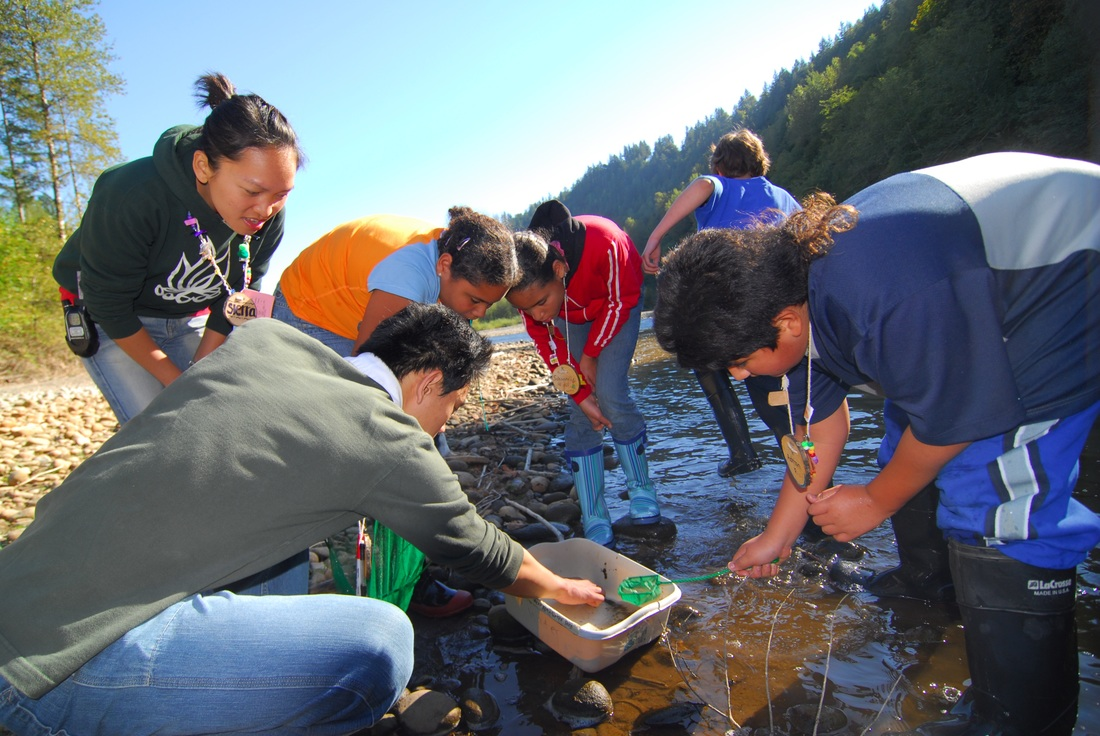 students catching critters in river